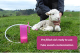 Lamb trusti Tuber colostrum tube