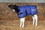 Thermoo calf coat high quality