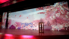 3d projection mapping Singapore Wedding Immersive 3D Mapping Luxury @ Ritz Carlton
