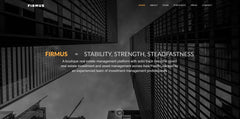 Firmus Capital Landing Microsite Web Design by interactive digital agency Singapore