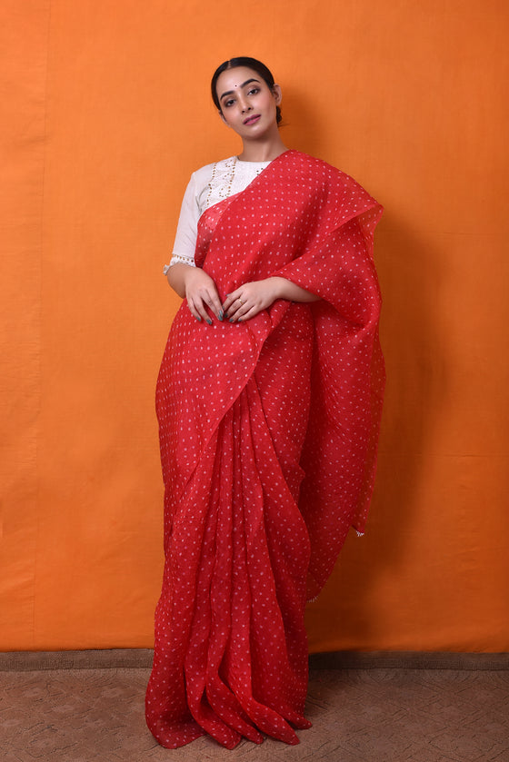 Bandhani on Pure Organza Saree in Red