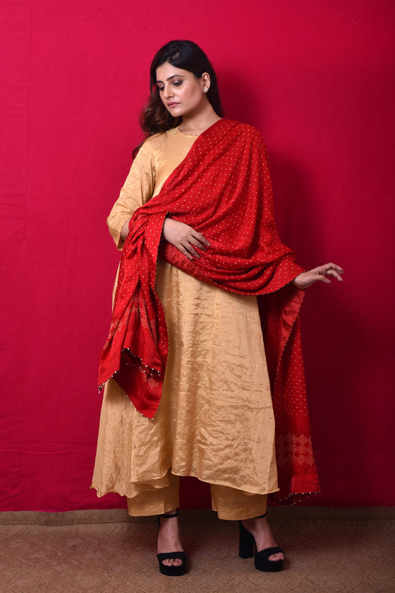 Gaji Silk Bandhani Dupatta in Red