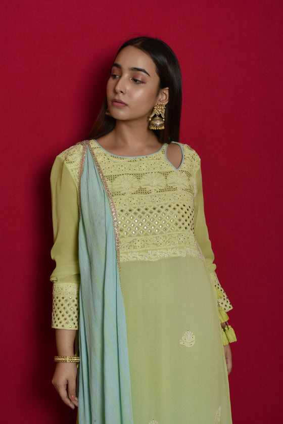 Double Layer Chikankari Floor Length in Green Blue