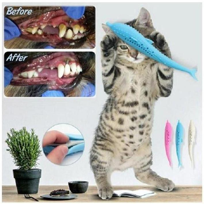 CAT TEETH CLEANER TOY Cayyogo
