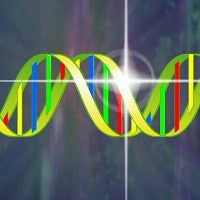 DNA Activation Technology