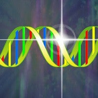 The Dna Activation™ CD. Spiritual Technology For Dna Activation And Spiritual Transformation.