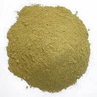 Ginko Biloba. Enhances Mind Power And Cognitive Abilities. Natural Naturopathic Herbal Remedy.