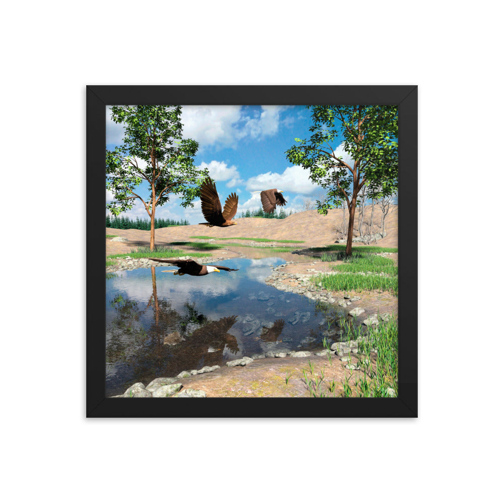 Eagles Over Pond, Framed poster