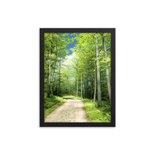 Load image into Gallery viewer, Sunny Trail, Framed poster