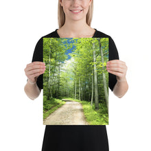 Load image into Gallery viewer, Sunny Trail to the Left, Poster