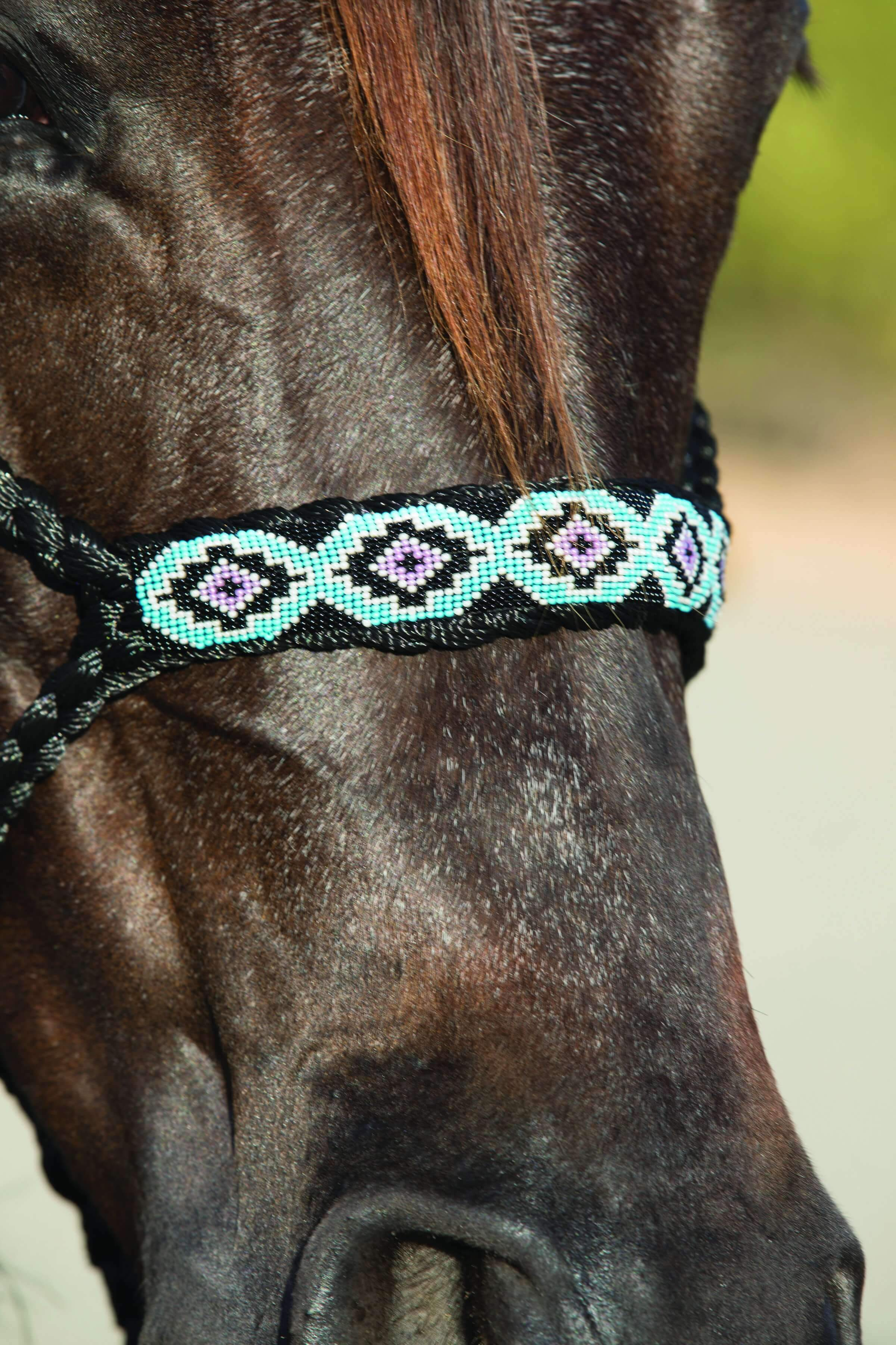 Professional's Choice Mule Tape Beaded Halter - Animal Health Express