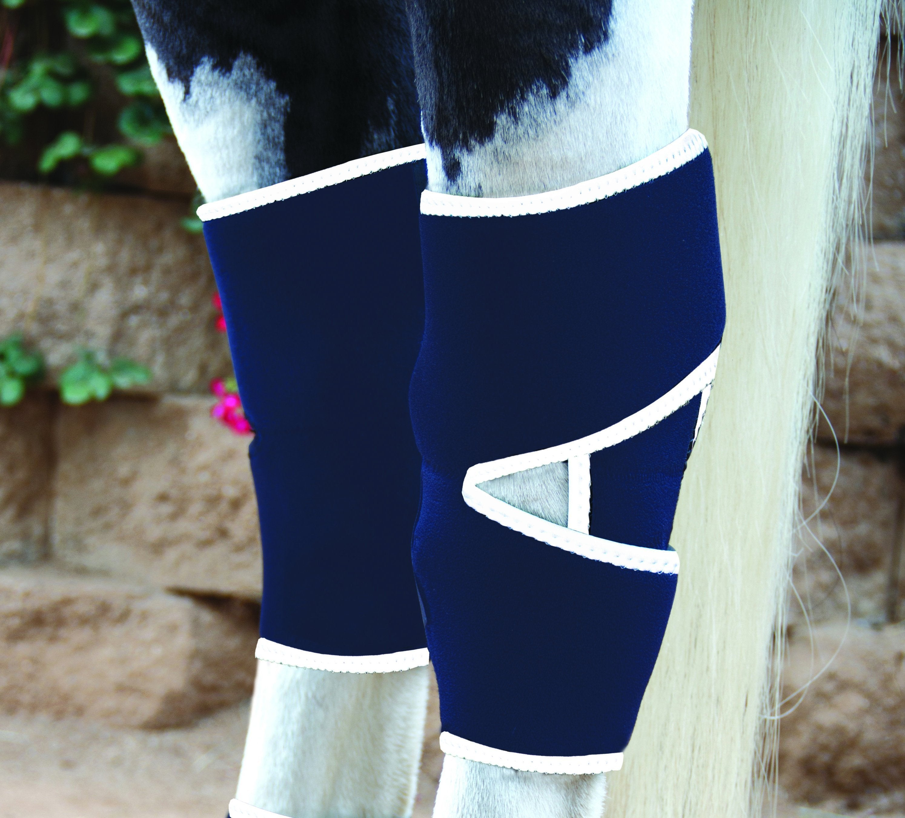 Professional's Choice Magnetic Hock Boots - Animal Health Express
