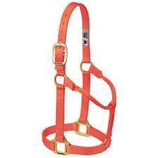 Weaver Leather Non-Adjustable Nylon Halter