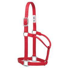 "Weaver Leather 1"" Nylon Halter with Chrome Hardware"