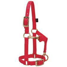 Weaver Leather Adjustable Miniature Horse Halter