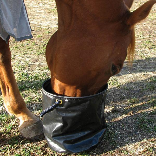 Collapsible Water Pail - Animal Health Express