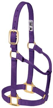 Nylon Halter Small Horse - Animal Health Express