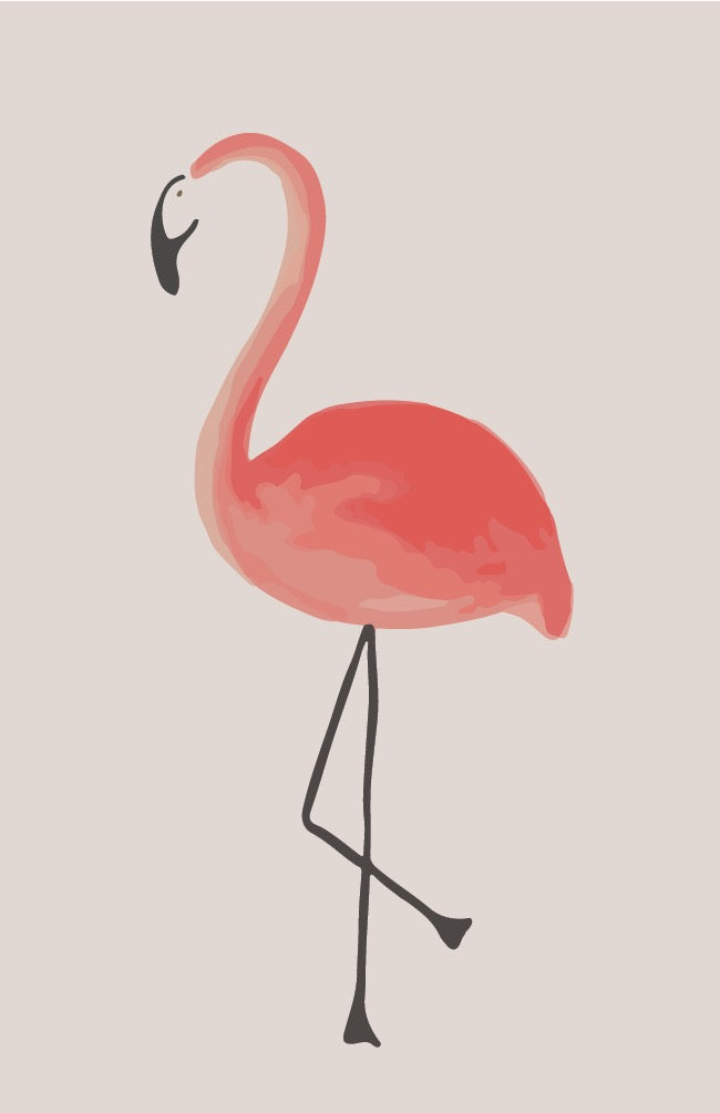 Flamingo - Create Your Surprise