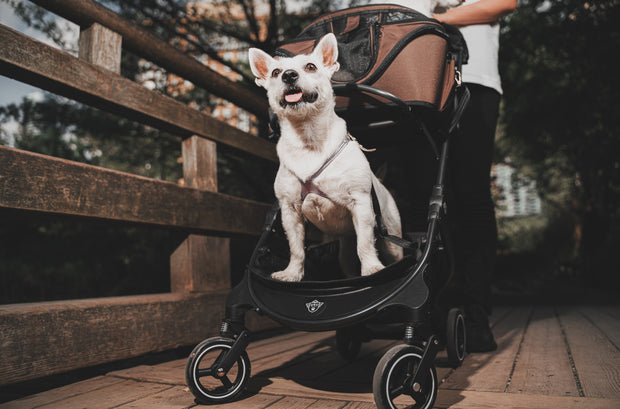 The Chickadee Multi-fit Stroller Base (Base only)