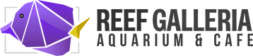 Reef Galleria Aquarium