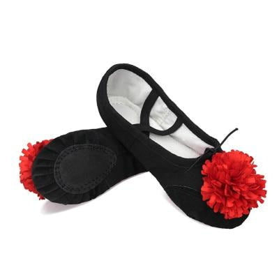 Pointe Cotton Canvas Leather Ballet Dance Shoes | Bridelily - Black-Red Flower / 8 - ballet dance shoes