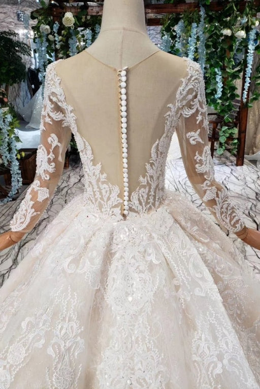 Princess Sleeves Sheer Neck Ball Gown Lace Long Wedding Dress - Wedding Dresses