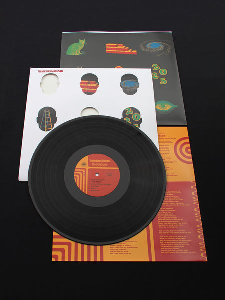 "Levitation Room ""Headspace"" Black LP"