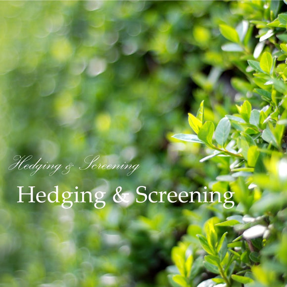 Hedging & Screening