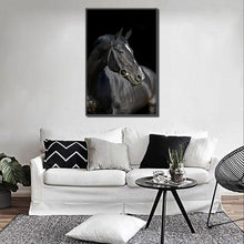 Load image into Gallery viewer, luxure Black Horse Posters