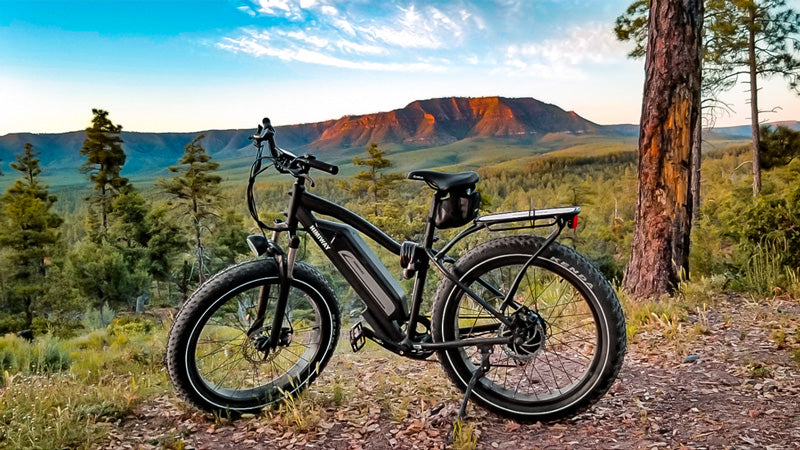 6 Things You Should Know About Electric Fat Tire Bike