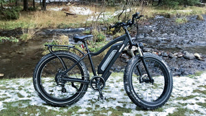 Can Electric Bikes Replace Traditional Bikes?