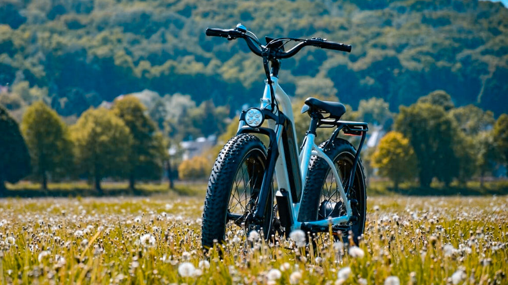 Himiway electric bike
