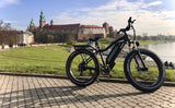 All Terrain Electric Fat Bike - Himiway Bike