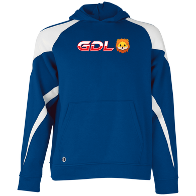 GDL Youth Colorblock Hoodie