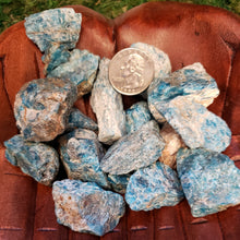 Load image into Gallery viewer, Blue Apatite Raw Stones, Large