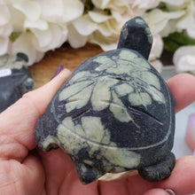 Load image into Gallery viewer, Chrysanthemum Turtle