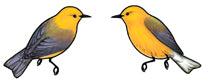 Jewelry - Earrings, Prothonotary Warbler