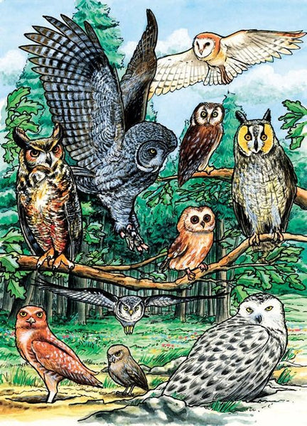 Tray Puzzle, Owls