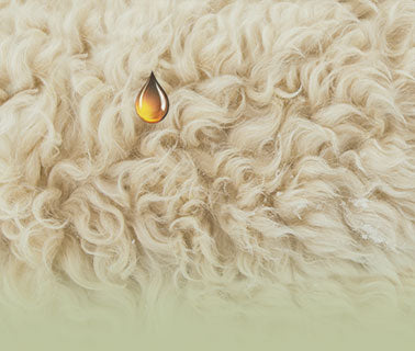 turmerry natural usa made wool comforter Scent of Lanolin