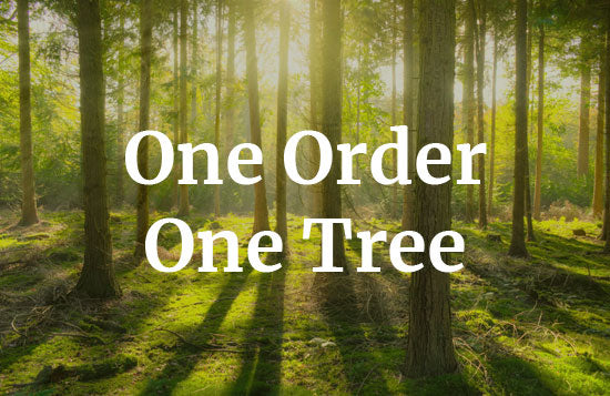 turmerry one order one tree