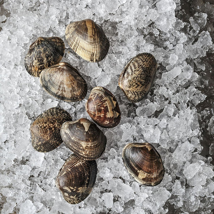 Manila Clams - By the pound