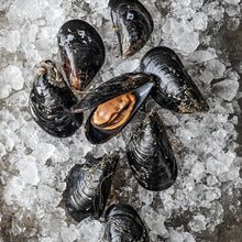 Load image into Gallery viewer, Mussels - by the pound
