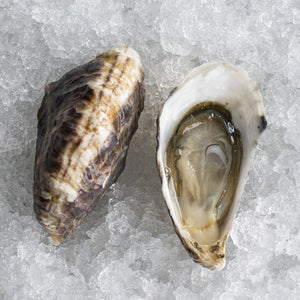 Extra Small Chelsea Gem Oysters