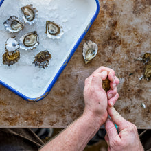 Load image into Gallery viewer, Redwood Kumamoto Oysters