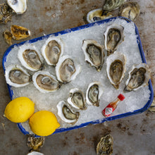 Load image into Gallery viewer, Oyster Tasting Kit
