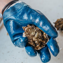 Load image into Gallery viewer, Oyster Shucking Glove