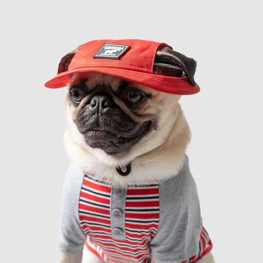 Bel Air Bucket Hat in Red, Canada Pooch Dog Hat