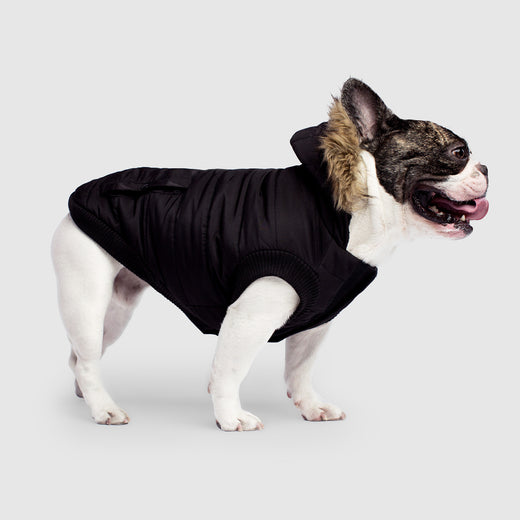 North Pole Dog Parka in Black, Canada Pooch Dog Parka