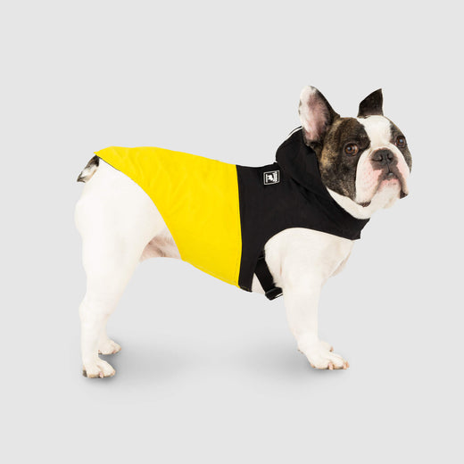 Pack It Jacket in Black Yellow, Canada Pooch Dog Rain Jacket