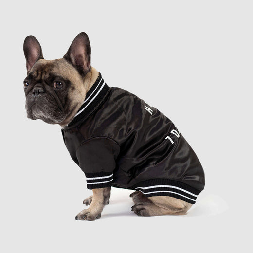 Home is Toronto Dog Bomber Jacket, Canada Pooch Dog Jacket